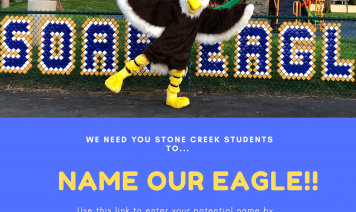 Name our Eagle